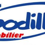 logo godille-immo2